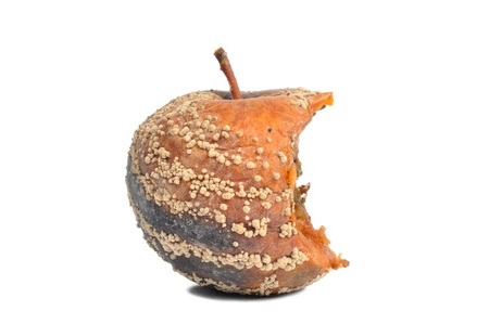 image pomme
